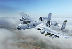 Fairchild Republic A-10C - Blacksnackes - 1/48