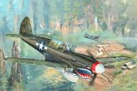 P-40N Warhawk - 1/32