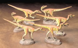 Velociraptors - Pack of Six - Second Choice - 1/35