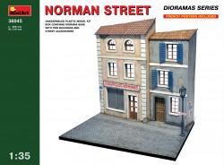 Norman Street - 1/35